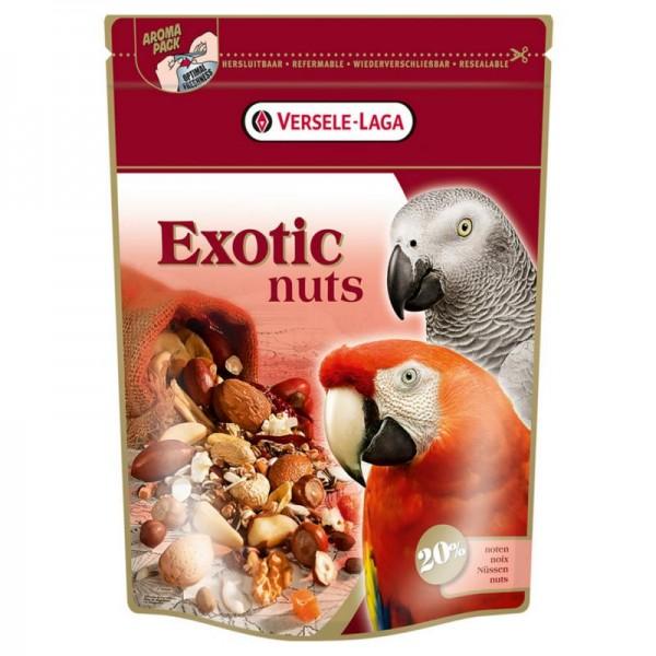 Premium Papagei Exotic Nuts Mix