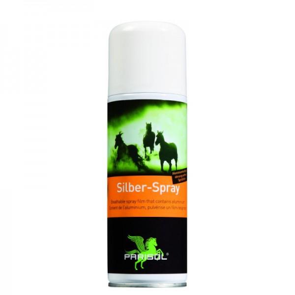 Silber-Spray