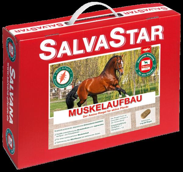 SalvaStar Muskelaufbau