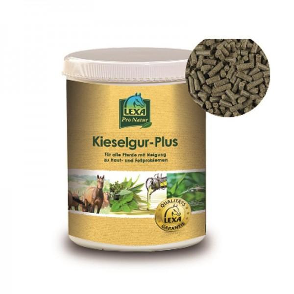 Kieselgur-Plus