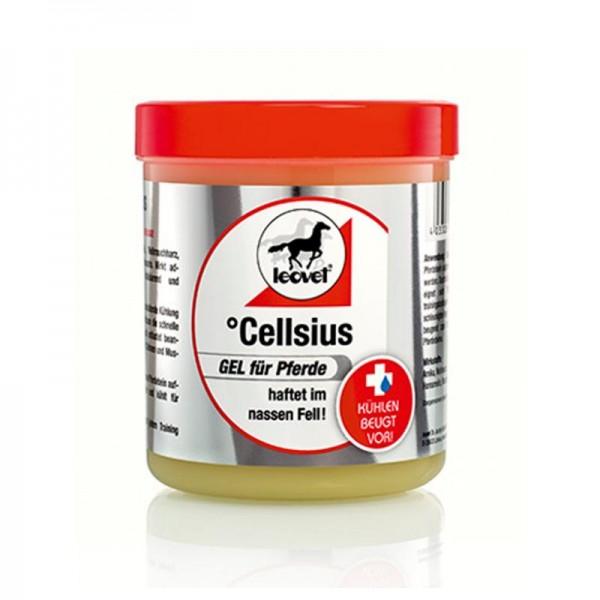 Cellsius Gel für Pferde