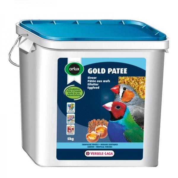 Gold Patee Exoten