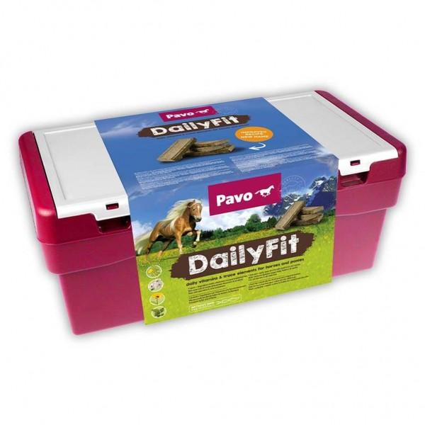 DailyFit im Putzkoffer