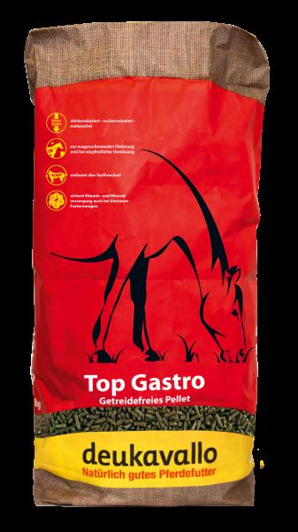 Top Gastro
