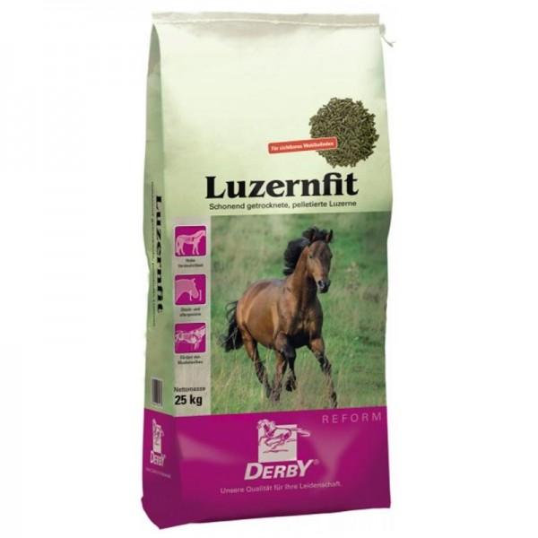 Luzernfit