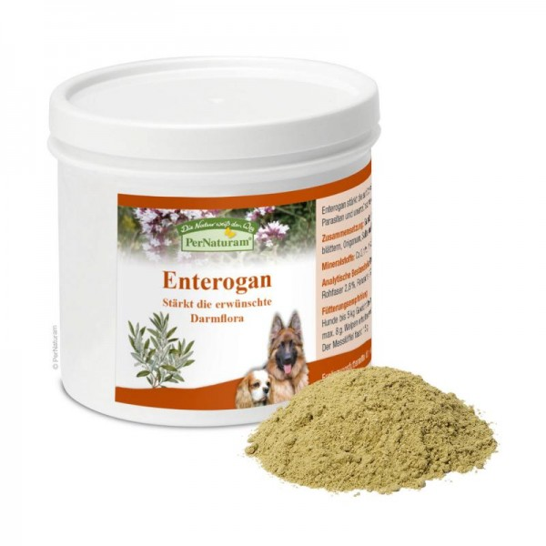 Enterogan-Dog
