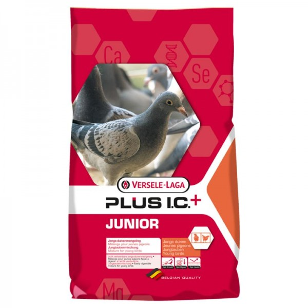 Plus I.C. Junior