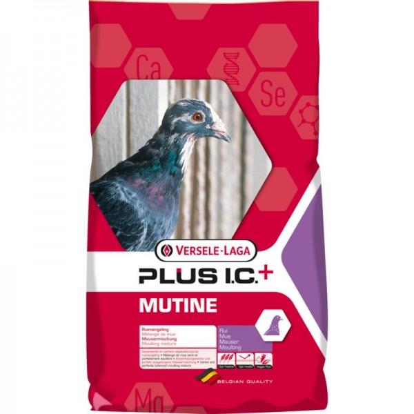 Plus I.C. Mutine