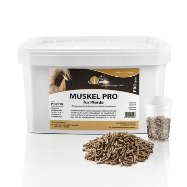 Muskel Pro