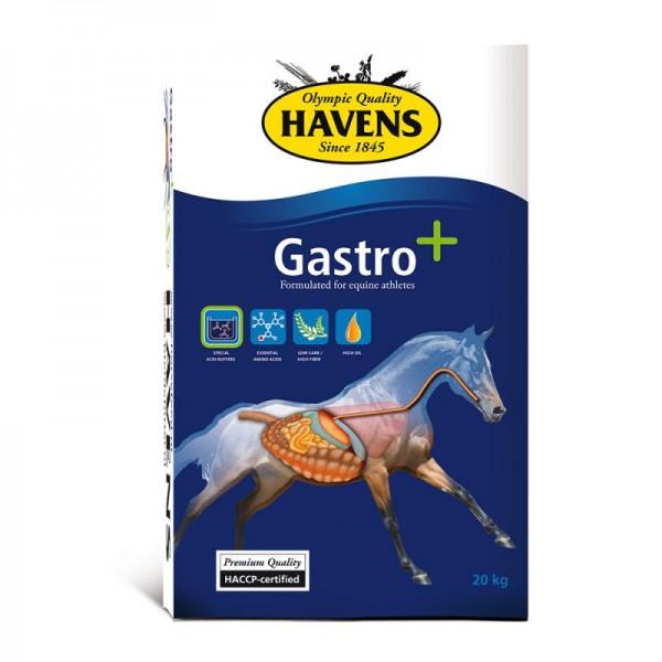 Gastro+